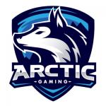 arctic gaming españa logo png